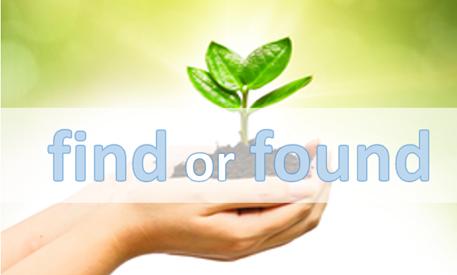 PHÂN BIỆT 2 TỪ FIND VÀ FOUND TRONG TIẾNG ANH 1